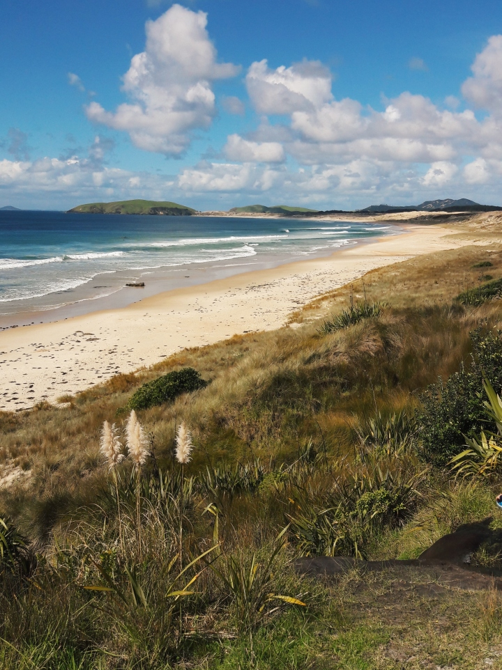 Henderson bay, Northland, NZ