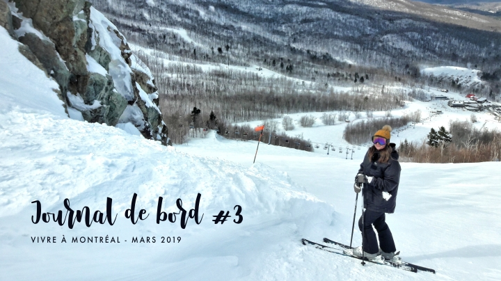 JOURNAL DE BORD #3 Vivre à Montréal –Mars